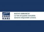 Coronari_nofoto